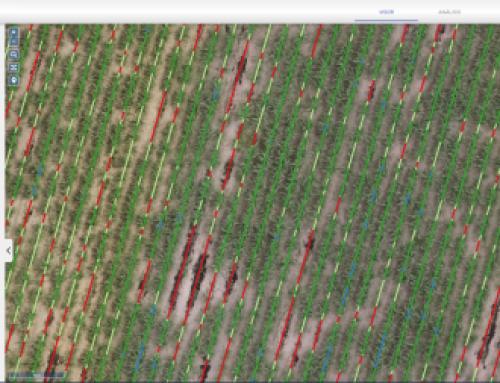 Actualización Mapsens® Agro    Mejora del algoritmo de detección de faltas para Caña de azúcar